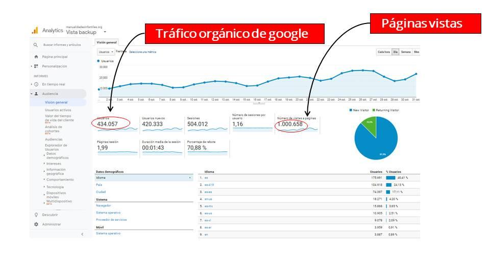 ejemplo de trafico para nicho en google